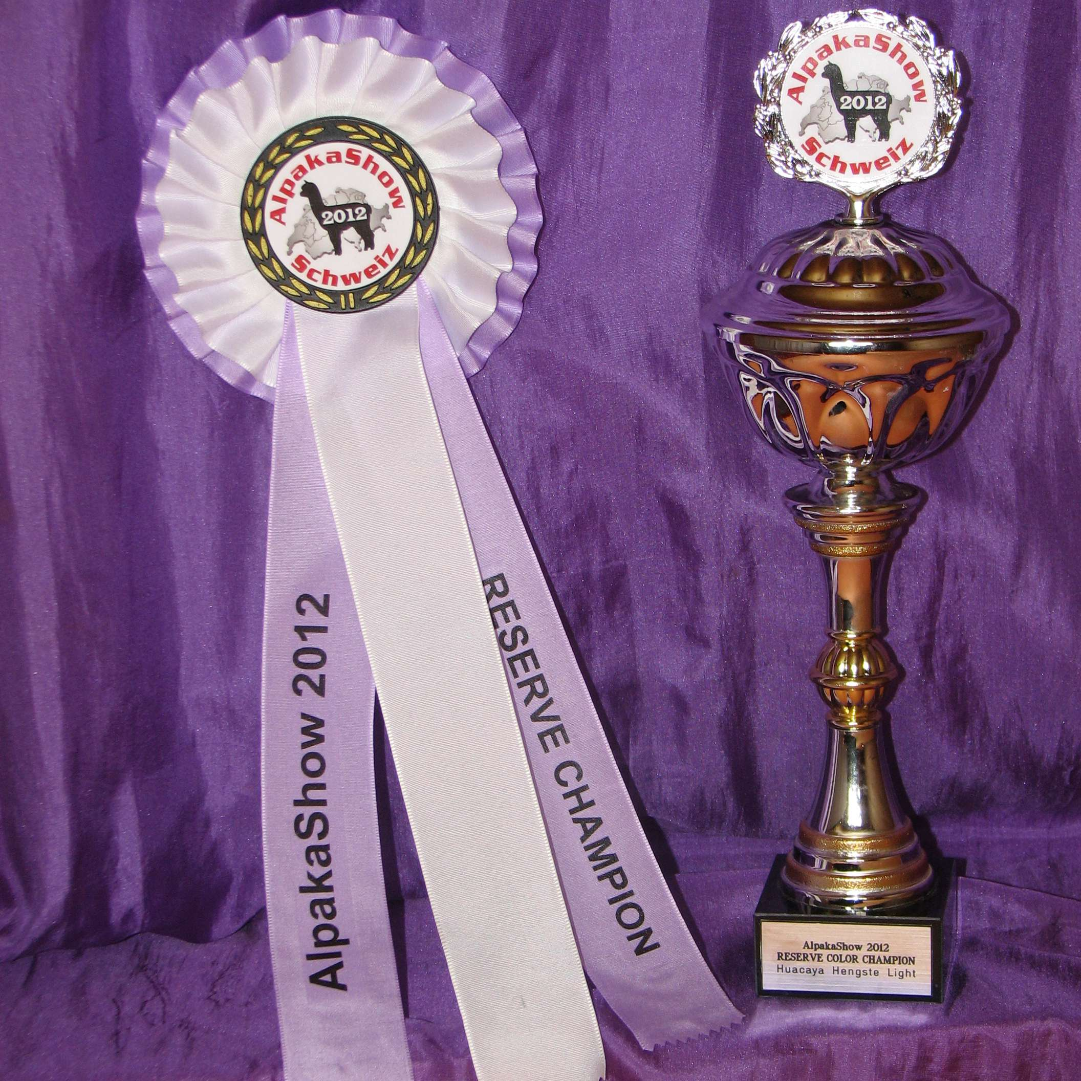Luciano wird Color Reserve Champion